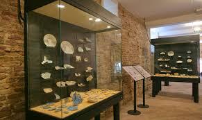 Museo Mondaino fossili
